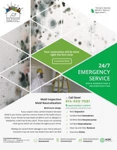 Mold Remediation Brochure
