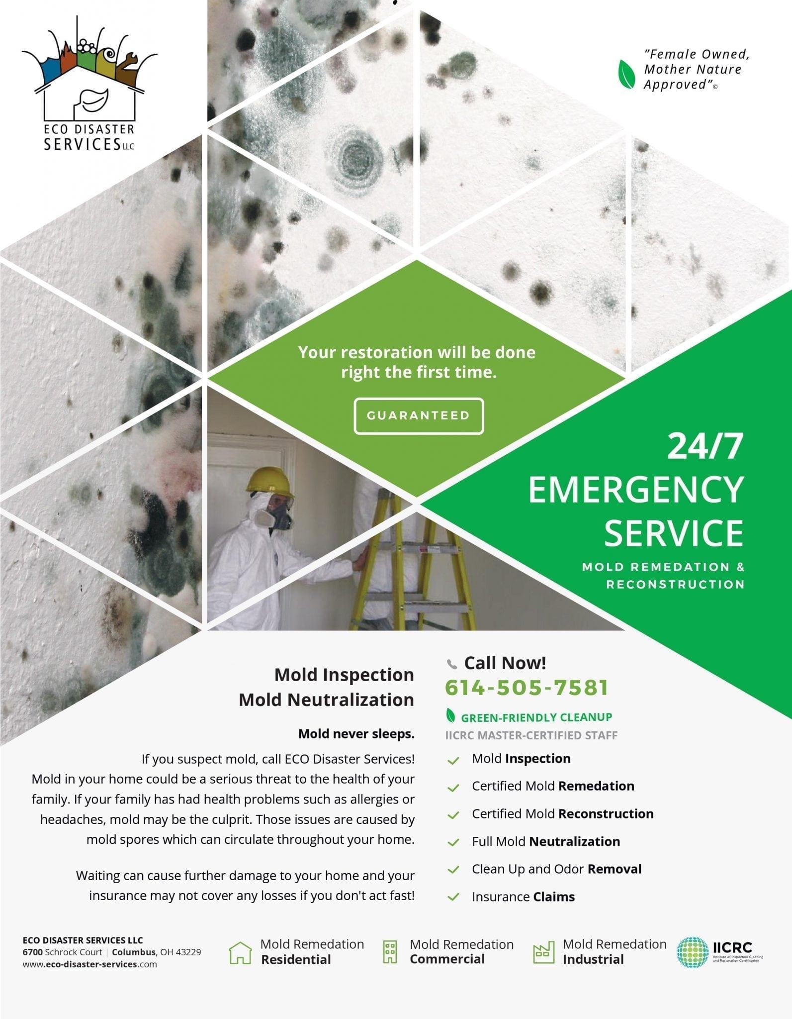 Mold Remediation Brochure