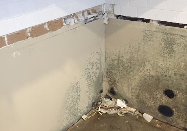 mold inspection at a property in Dublin, Ohio